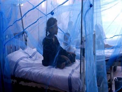 پنجاب میں ڈینگی کے مزید 71مریضوں کی تصدیق
