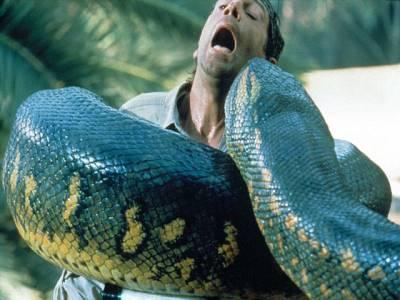سانپوں سے انسانی زندگی کو خطرہ پیدا ہو گیا