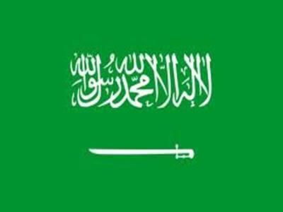 سعودی عرب نےاقوام متحدہ میں سیکیورٹی کونسل کی مستقل رکنیت کا مطالبہ کر دیا