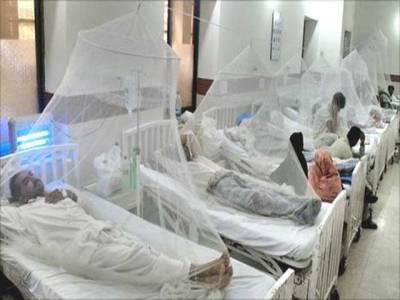 پنجاب میں مزید59مریضوں میں ڈینگی وائرس کی تصدیق