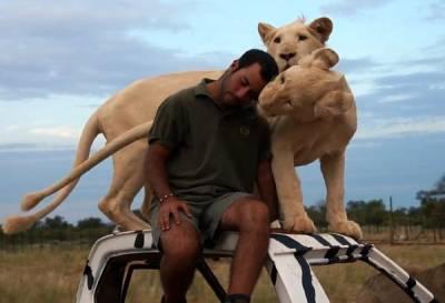 دو خطرناک شیروں کو گھر میں رکھنے والا نڈر شخص