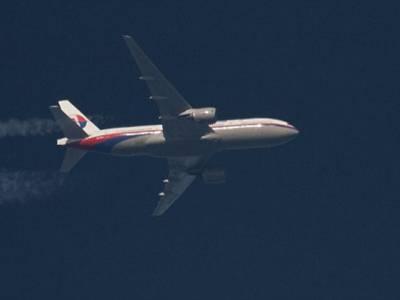 ملائیشین طیارہ امریکی لڑاکا طیاروں نے مار گرایا:دعویٰ