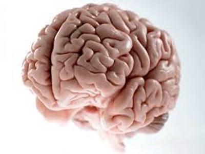 اب انسانی دماغ بھی چارج ہوں گے