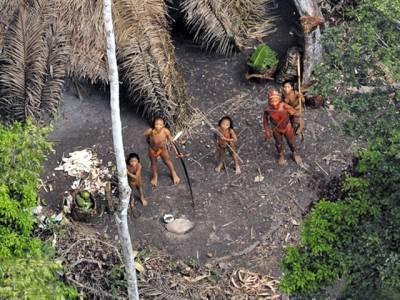 الگ رہنے والے جنگلی قبیلے کا دنیا سے پہلا رابطہ