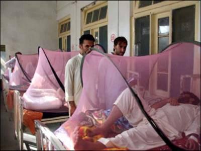 ڈینگی سے متاثرہ مریضوں کی تعداد200سے تجاوز کرگئی