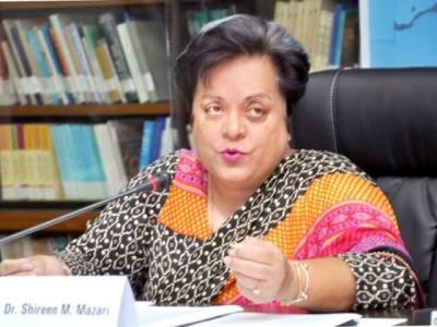 تحریک انصاف صرف با اختیار عدالتی کمیشن کی بات مانے گی : شیریں مزاری