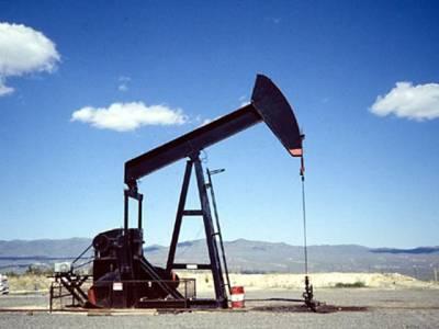 تیل کی قیمتیں گرا کر سعودی عرب کسے دیوار کے ساتھ لگارہاہے ؟جو آپ سوچ رہے ہیں ایسا ہر گز نہیں