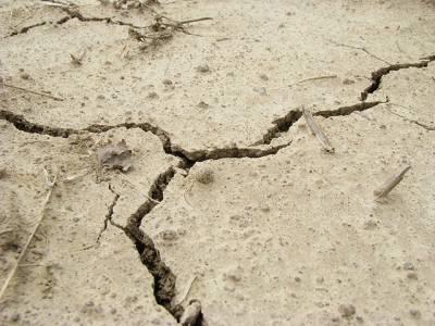 سوات اور اردگرد کے علاقے میں زلزلے کے جھٹکے