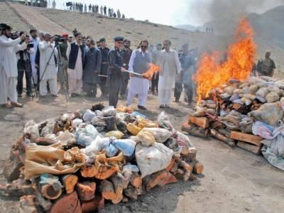 خیبر ایجنسی: کروڑوں مالیت کی منشیات نذر آتش کر دی گئی