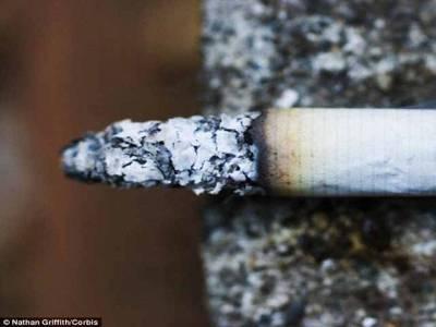 سگریٹ کا وہ فائدہ جس سے آپ اب تک لاعلم تھے