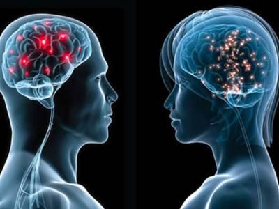 آپ کا دماغ زنانہ ہے یا مردانہ؟ان آسان سوالات کے ذریعے آپ بھی معلوم کر سکتے ہیں