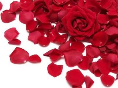 گلاب کی پتیوں کے ذریعے چربی پگھلانےکا حیرت انگیزنسخہ
