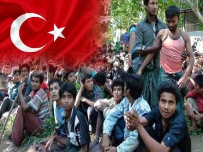 ترکی نے روہنگیا مہاجرین کی ذمہ داری لے لی