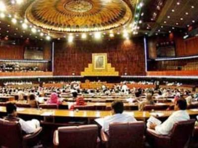 برما کے مسلمانوں کے حق میں قومی اسمبلی میں قرارداد منظور، مظالم کی سخت مذمت