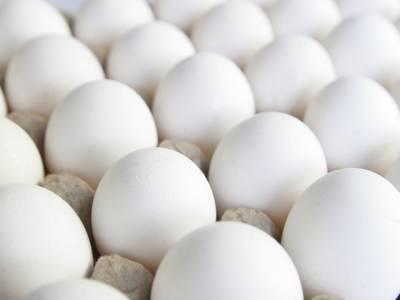 کیا آپ کو معلوم ہے انڈوں کو ایک ماہ تک محفوظ کیسے رکھا جا سکتاہے؟حیرت انگیز طریقہ جانئے