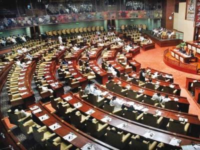 قومی اور پنجاب اسمبلی میں بجٹ منظور: ارکان پارلیمنٹ کی تنخواہ میں اضافہ، پی آئی اے سے دنیا بھر میں مفت سفر کی سہولت
