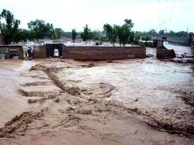 سیلاب سے نمٹنے کیلئے حفاظتی اقدامات کر لئے گئے ہیں: ڈی جی پی ڈی ایم اے