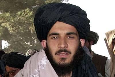 ملا عمر کی ہلاکت کے بعد قطر میں طالبان کے سیاسی دفتر کے امیر اپنے عہدے سے مستعفی