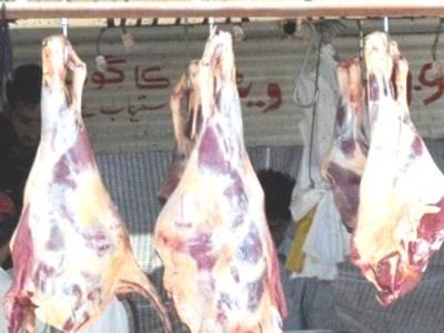 وزیراعلیٰ پنجاب شہبازشریف نے پنجاب اینیمل ایکٹ میں ترامیم کی سمری کی منظوری دیدی