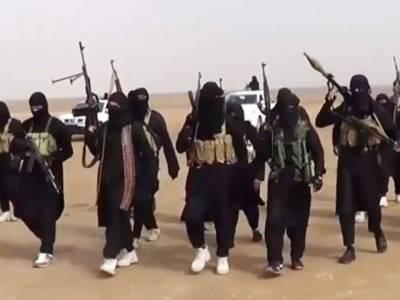 داعش نے شام کے شہر تدمر میں فتح کی علامت دروازہ قوس النصر کو دھماکے سے اڑا دیا