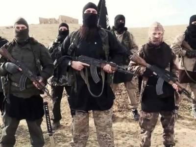 فرانس کے 1500 نوجوان جہاد کی غرض سے شام گئے،300مارے گئے،200قید ہوئے ۔۔۔