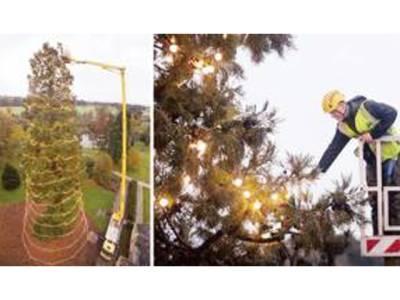 برطانیہ کا سب سے اونچا کرسمس ٹری روشن کر دیا گیا