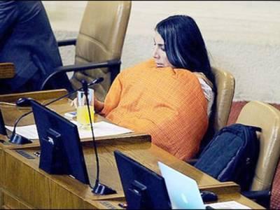 خاتون رکن پارلیمنٹ کمبل لپیٹ کر اسمبلی میں پہنچ گئیں