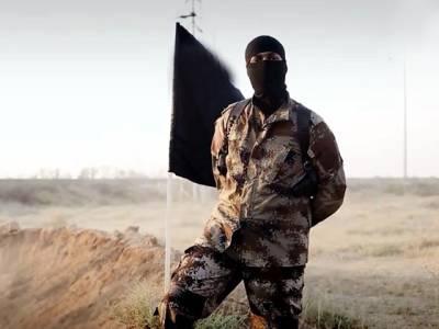 داعش کی سرکوبی کے لیے متحدہ عرب امارات فوج شام بھیجنے پر رضا مند