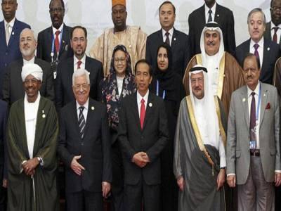 او آئی سی کا پانچواں غیر معمولی اجلاس اختتام پذیر، مسئلہ فلسطین کے منصفانہ حل کی کوششیں تیز کرنے پر اتفاق