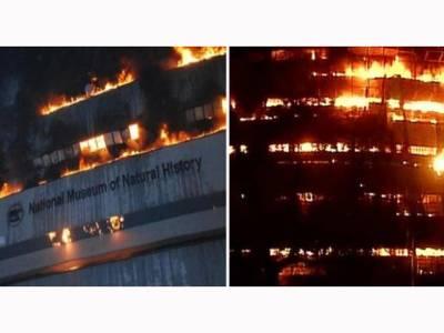 نئی دہلی کے عجائب گھر میں آتشزدگی، نادر نمونے تباہ