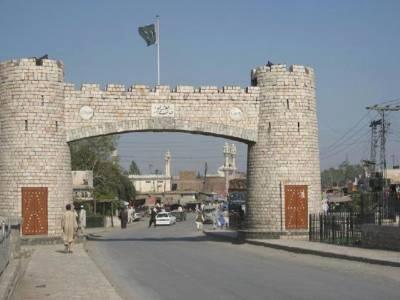 پشاور : چوہوں کے بعد بندر،کتے اور بلیاں بھی زور آور ہو گئے