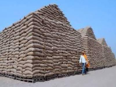 خراب گندم کا معاملہ : بلوچستان حکومت نے ذمہ داروں کیخلاف کارروائی کا فیصلہ کر لیا