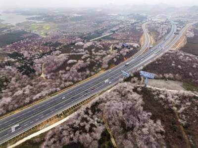 چین نے دنیا کے سب سے بڑے 724 ارب ڈالر کے منصوبے کا اعلان کردیا، یہ رقم کہاں لگائی جائے گی، ایسی تفصیلات جو جانے دنگ رہ جائے