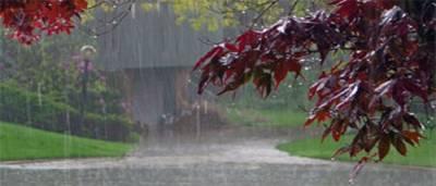 آئندہ 24گھنٹوں کے دوران پنجاب اور کے پی سمیت بیشتر علاقوں میں تیز ہواﺅں کیساتھ بارش کی توقع ہے : محکمہ موسمیات