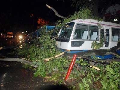 اسلام آباد ،راولپنڈی ،اٹک اور نوشہرہ میں تیز آندھی کے باعث مختلف حادثات میں 13افراد جاں بحق اور150کے قریب افراد زخمی ہو گئے