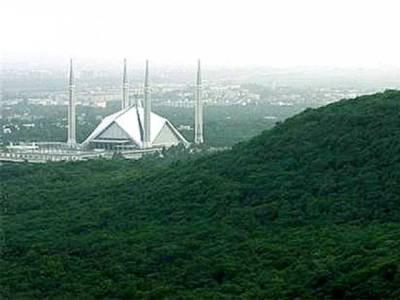 خیبرپختونخوا کے بعد وفاق کا بھی 'گرین پاکستان'پروگرام شروع کرنے کا فیصلہ