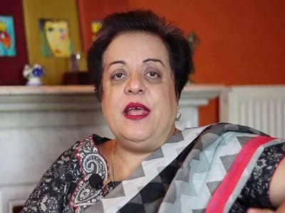 بھارت کی این ایس جی میں شمولیت پاکستان نہیں چین کی وجہ سے رکے گی: شیریں مزاری