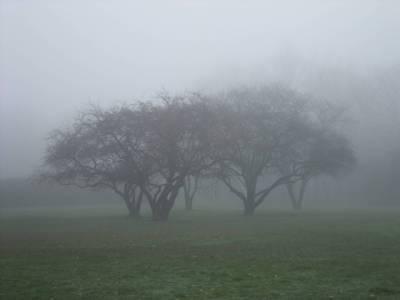 آج بیشتر علاقوں میں موسم خشک ، لاہور سمیت پنجاب کے مختلف شہروں میں گرد آلود دھند پڑنے کا امکا ن ہے : محکمہ موسمیات