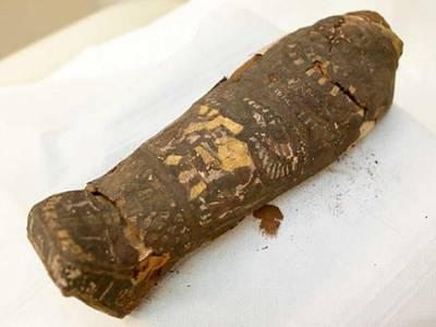 مصر میں ملنے والی 2300 سال پرانی چیز جسے آج تک سائنسدان ایک پرندے کی لاش سمجھتے رہے، دراصل کیا چیز ہے؟ ایسا انکشاف کہ کو ئی سوچ بھی نہ سکتا تھا