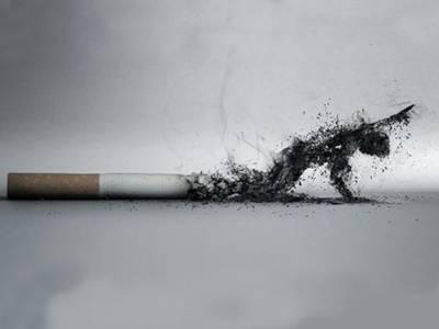 حکومت کا انسداد تمباکو نوشی قوانین پرسختی سے عملدرآمد کا فیصلہ، صوبوں کو مراسلہ ارسال