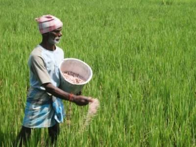 قومی زرعی ترقیاتی بینک لمیٹڈ کی جانب سے پنجاب کو نوازنے کا انکشاف ، ایک سال میں زرعی قرضوں کا 81 فیصد پنجاب کے کسانوں میں تقسیم