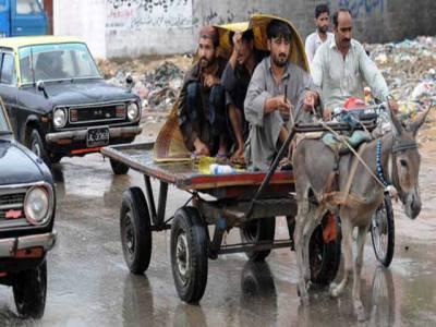 گدھا گاڑیوں اور ریڑھیوں کی رجسٹریشن کی جائے گی :کمشنر کوئٹہ