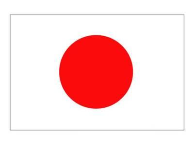 جاپانی سفیر کی جانب سے تقریب کا اہتمام، مہمانوں کی نئے آرمی چیف کی تعریف، مختلف امور پر گپ شپ