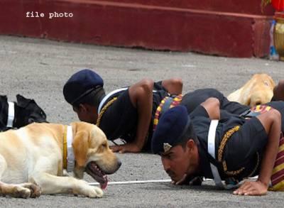 """""""کتے ٹہلاتے ہیں ،میم صاحبہ کو بیوٹی پارلر لے کر جاتے ہیں """"بھارتی فوجی افسران نے سپاہیوں کو گھریلو کام پر لگا دیا"""