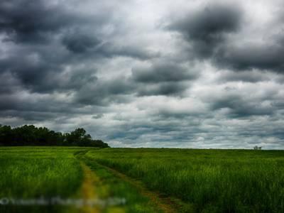 اگلے 2روز کے دوران کشمیر اور گلگت بلتستان سمیت چند مقامات پر بارش کا امکان ہے : محکمہ موسمیات