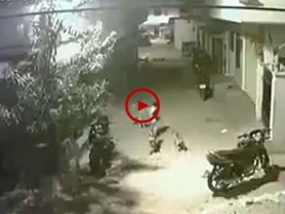 اس چھوٹے بچے کی بہادری کو کیمرے نے محفوظ کر لیا۔ آپ بھی یہ ویڈیو دیکھیں۔ ویڈیو: حیدر علی۔ کراچی