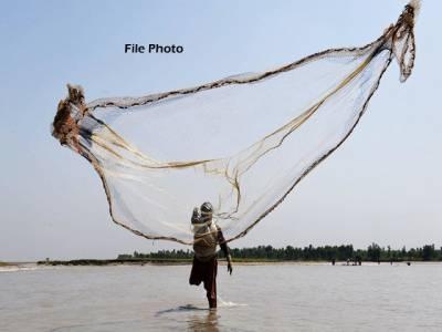 سندھ میں آبی حیات کے شکار پر آج سے 2ماہ کے لئے پابندی، خلاف ورزی پر ایک سال قید و 50 ہزار جرمانہ