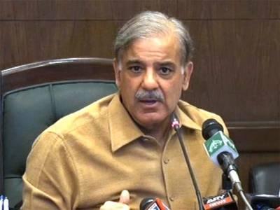 ملک وزیراعظم نواز شریف کی قیادت میں ترقی کی راہ پر گامزں ہو چکا ہے ،وزیر اعلی پنجاب شہباز شریف