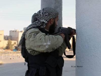 داعش کاپاکستان میں وجود ابھی نسبتاًچھوٹامگر زور پکڑ رہی ہے،امریکی ماہر