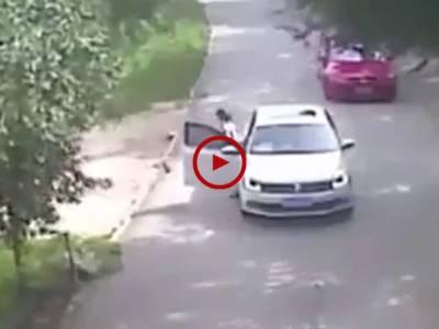 اس ویڈیو میں دیکھیں شیر نے لڑکی پر حملہ کر دیا۔ لڑکی کی لاپرواہی سے اس کے ساتھ کیا حادثہ ہو گیا۔ ویڈیو: حسن فاروق۔ لاہور